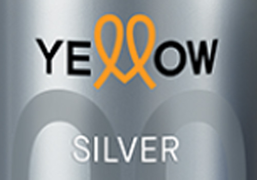 BRAND: Yellow Silver Color (Ye Color)